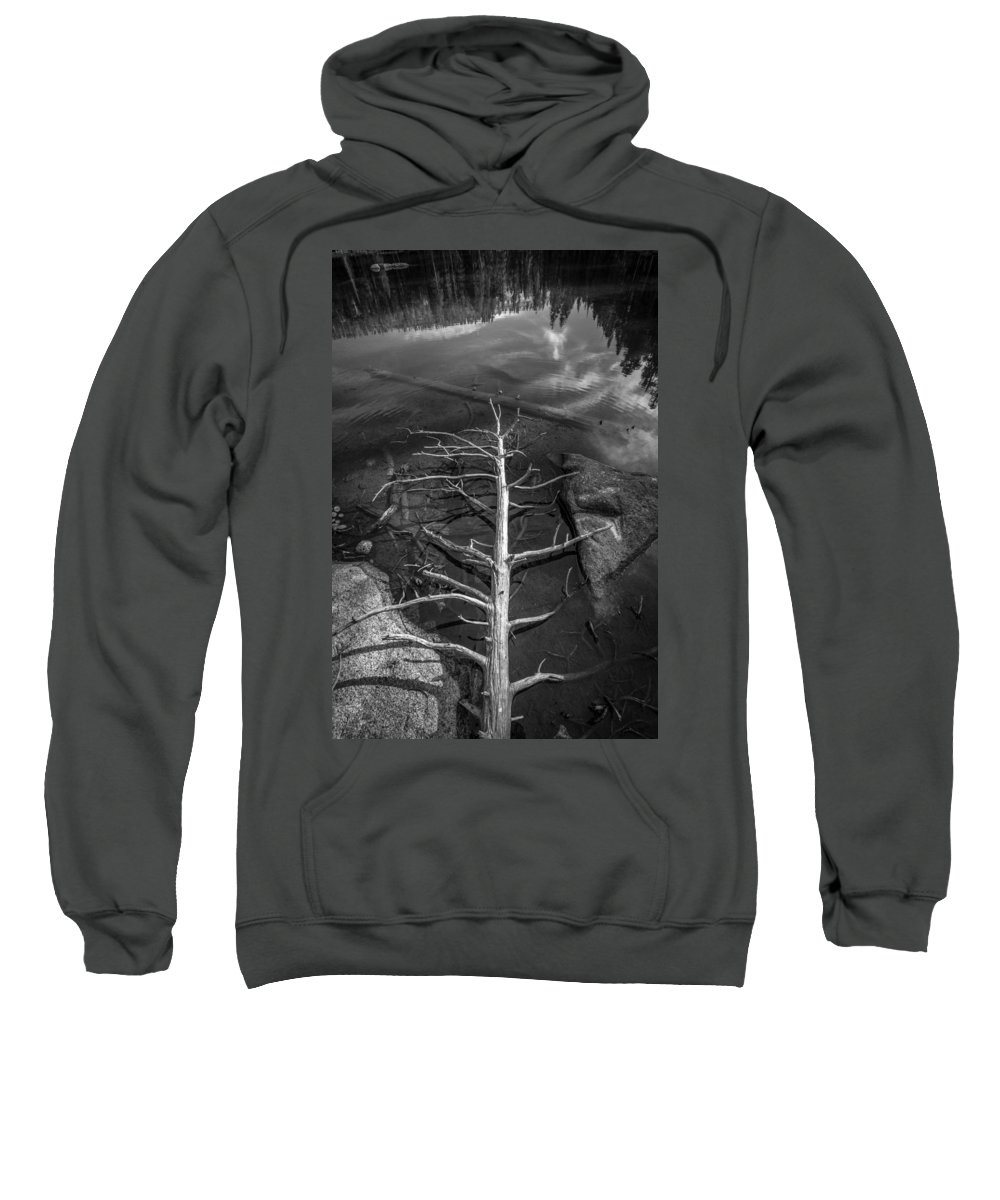 Black & White Sweatshirt featuring the photograph Skeleton by Peter Tellone