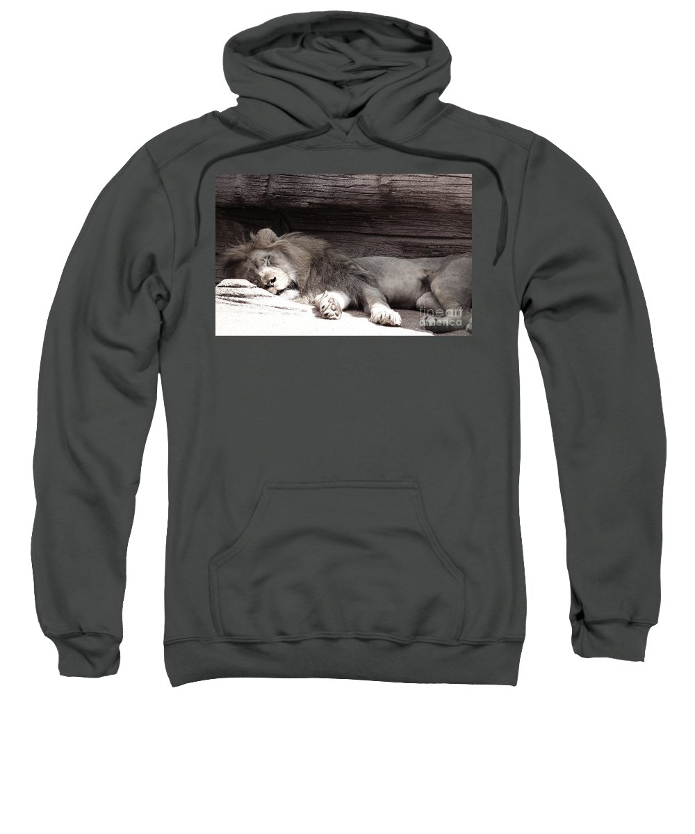 Lions Sweatshirt featuring the photograph Sleepy Beauty by Andrea Anderegg