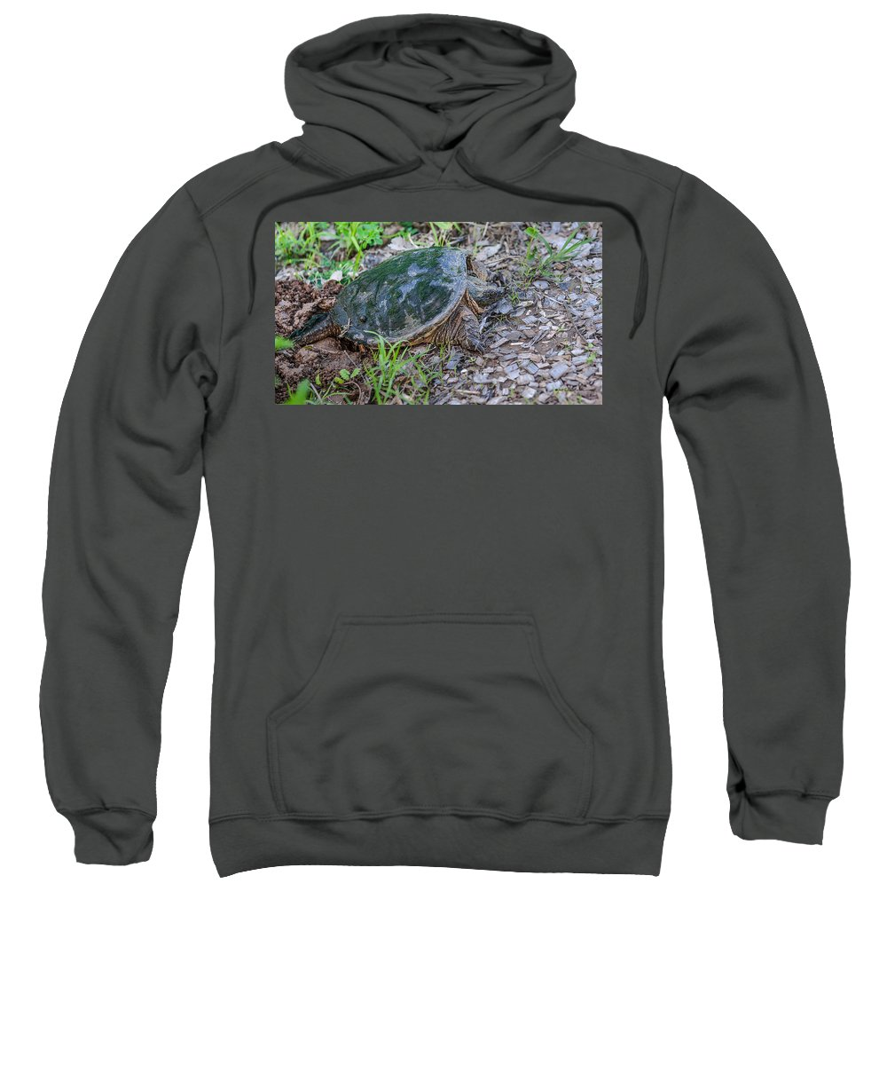 Heron Heaven Sweatshirt featuring the photograph Snapper Eggs by Edward Peterson