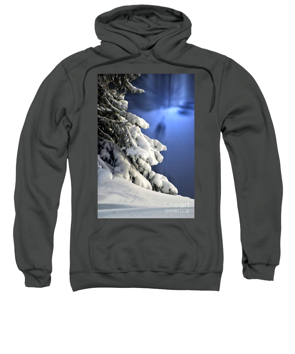 Tree Sweatshirt featuring the photograph Snow Covered Tree Branches by Thomas Woolworth