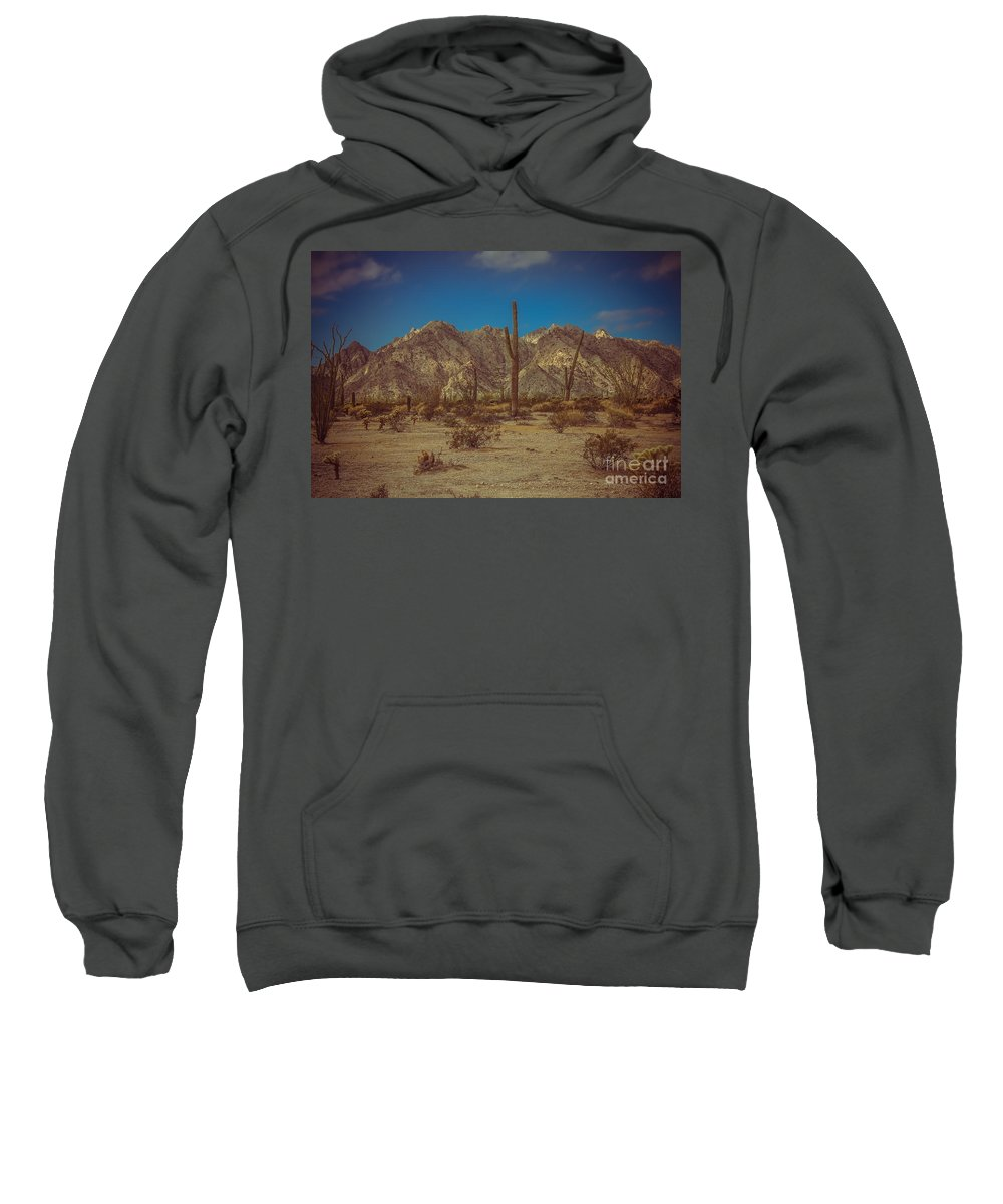 Arizona Sweatshirt featuring the photograph Sonoran Desert by Robert Bales