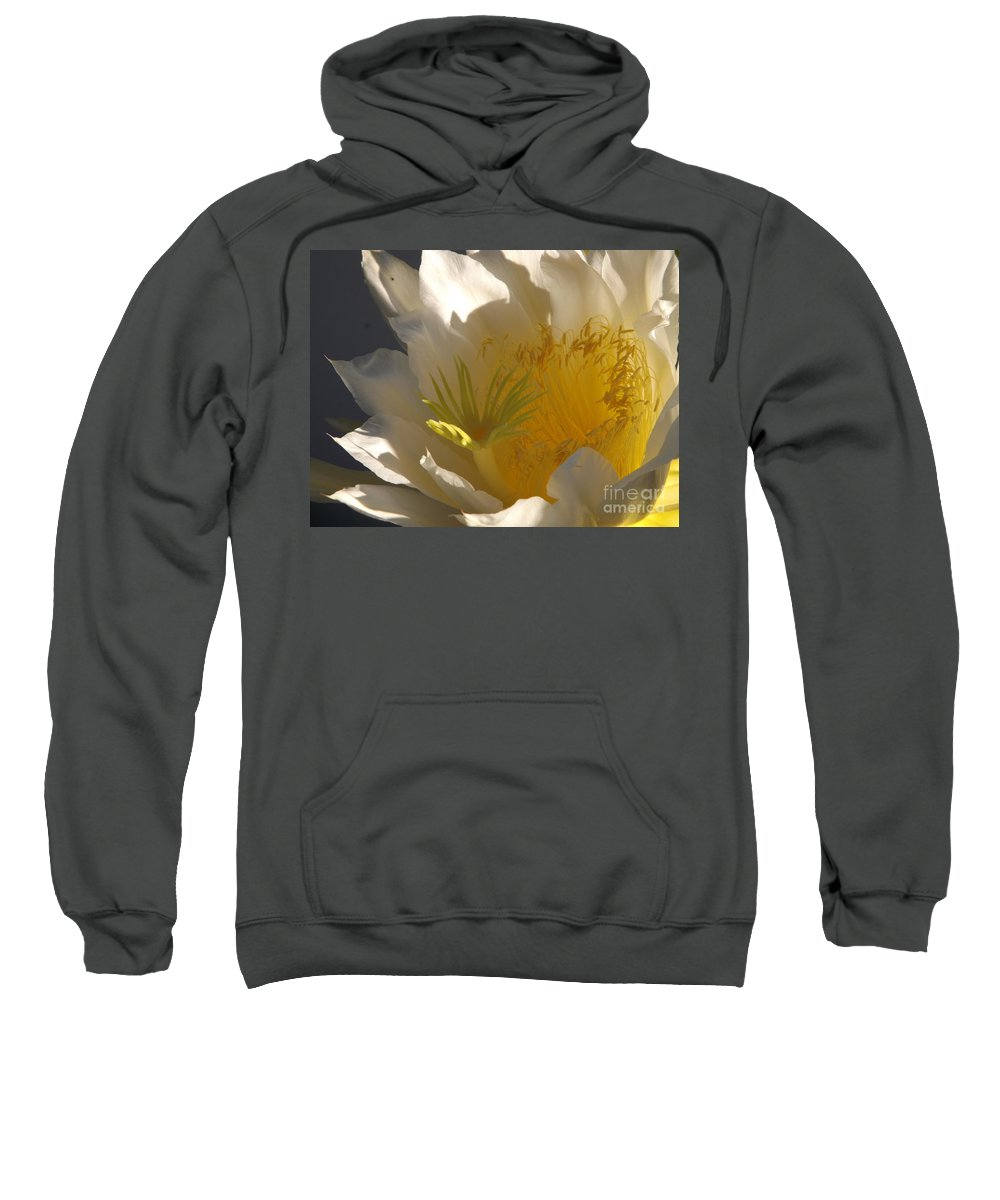 Dragon Fruit Sweatshirt featuring the photograph Spectacular Dragon Fruit Bloom by Jussta Jussta