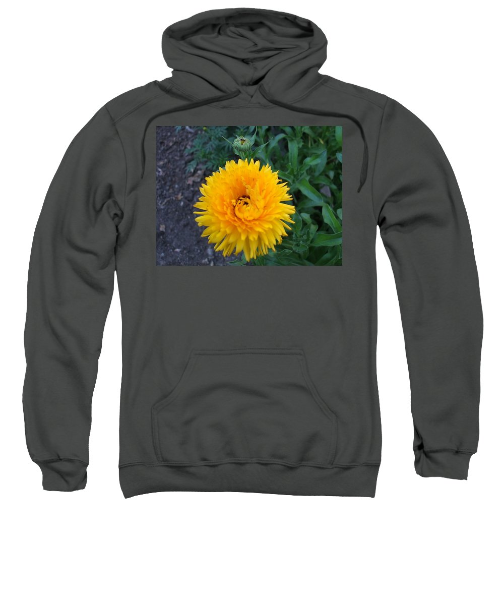 Floral Sweatshirt featuring the photograph Spiral by Jo Dawkins