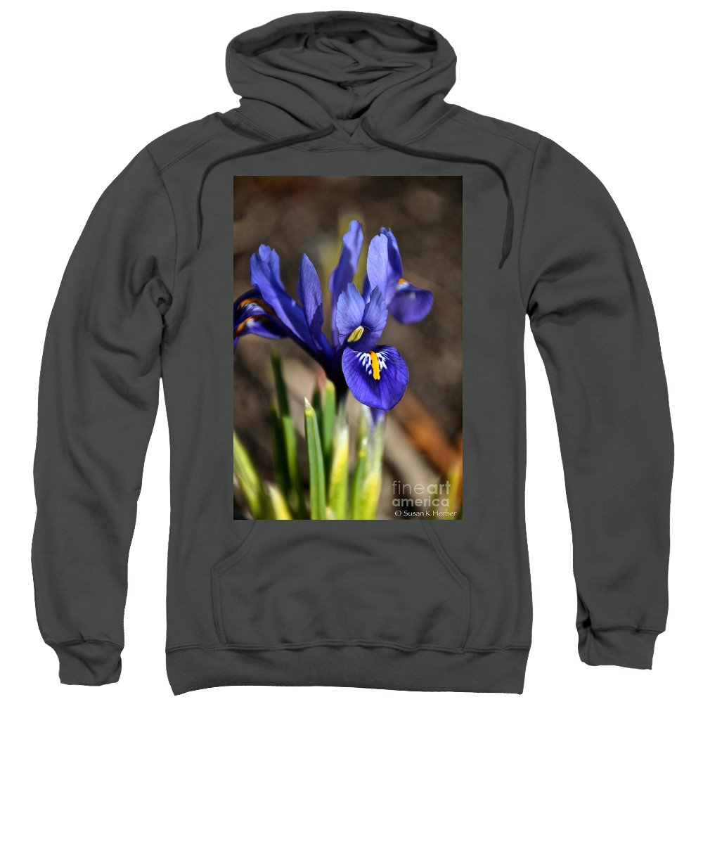 Flower Sweatshirt featuring the photograph Spring Iris by Susan Herber