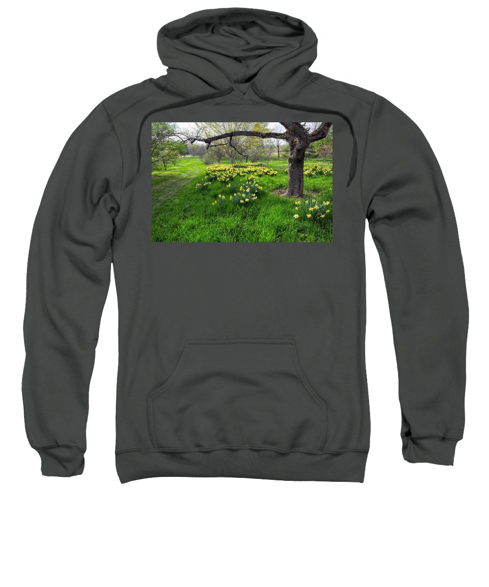 Spring Sweatshirt featuring the photograph Spring Is Here by Dave Mills