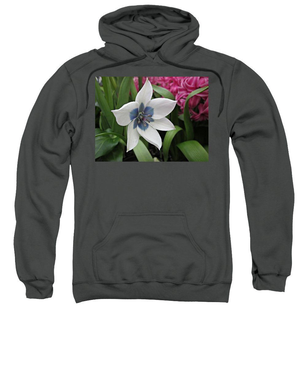 White Flower Sweatshirt featuring the photograph Spring Star by MTBobbins Photography