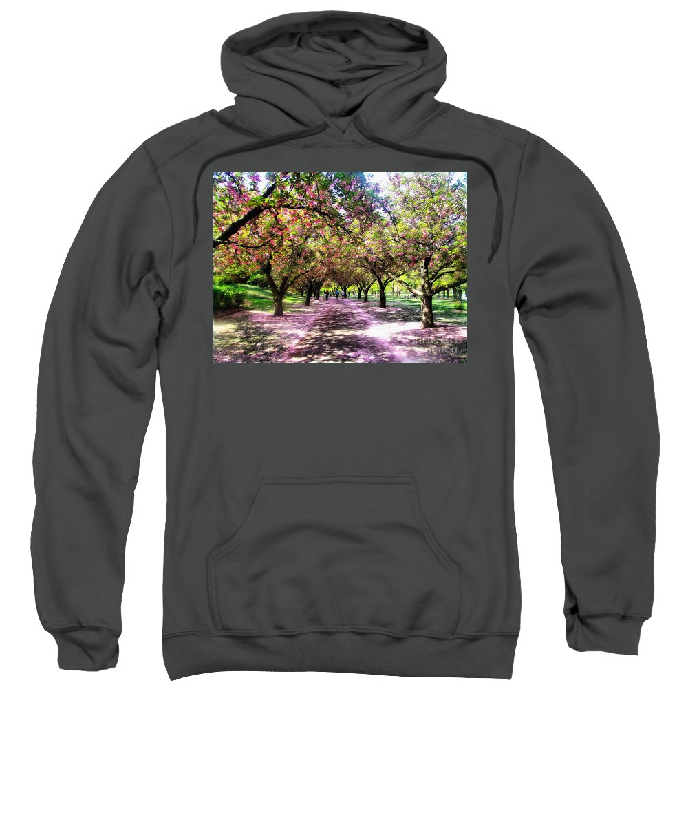 Cherry Blossoms Sweatshirt featuring the photograph Spring Walkway Lined By Blooming Cherry Trees by Nishanth Gopinathan