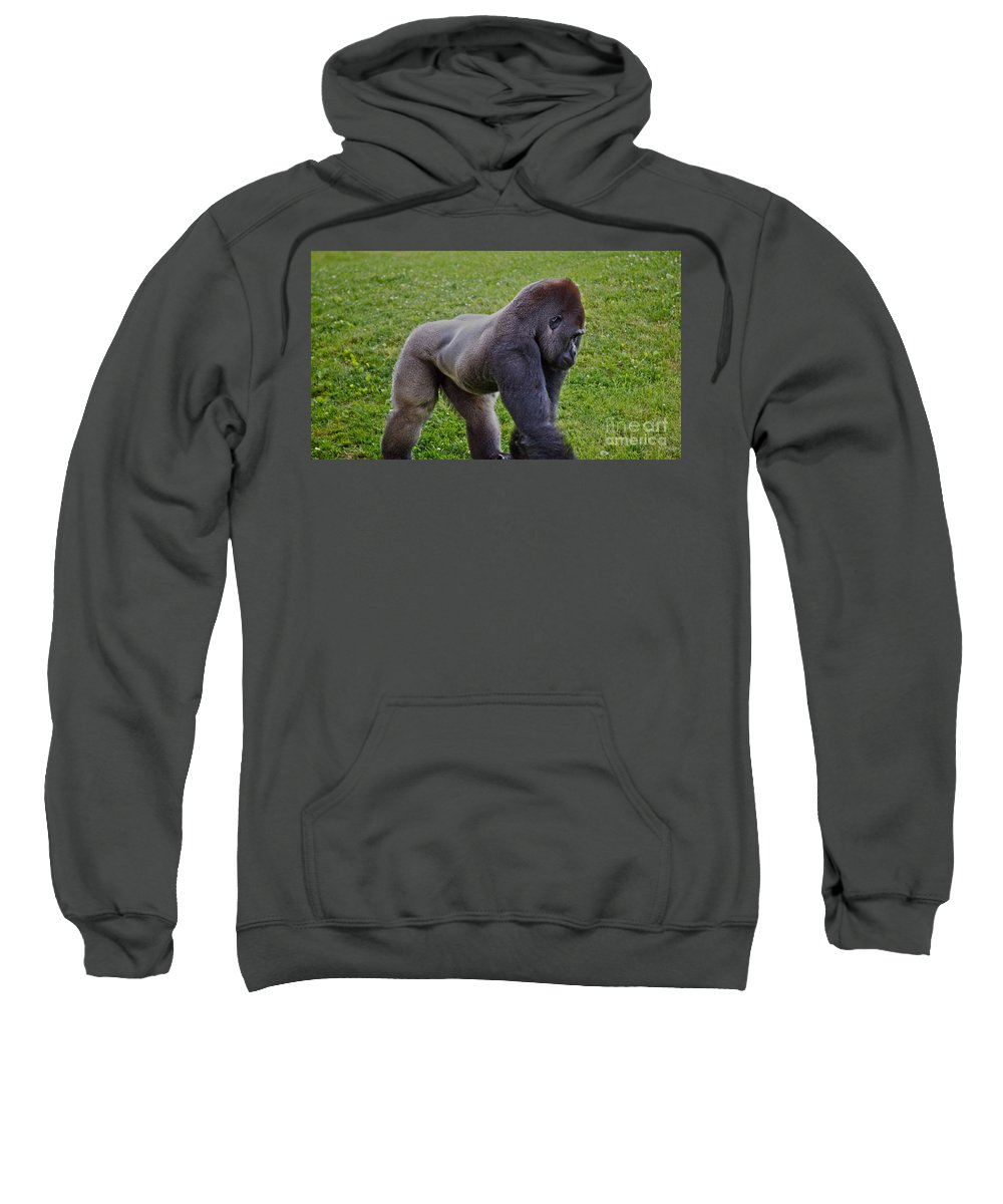Male Sweatshirt featuring the photograph Stand Off by Crystal Harman