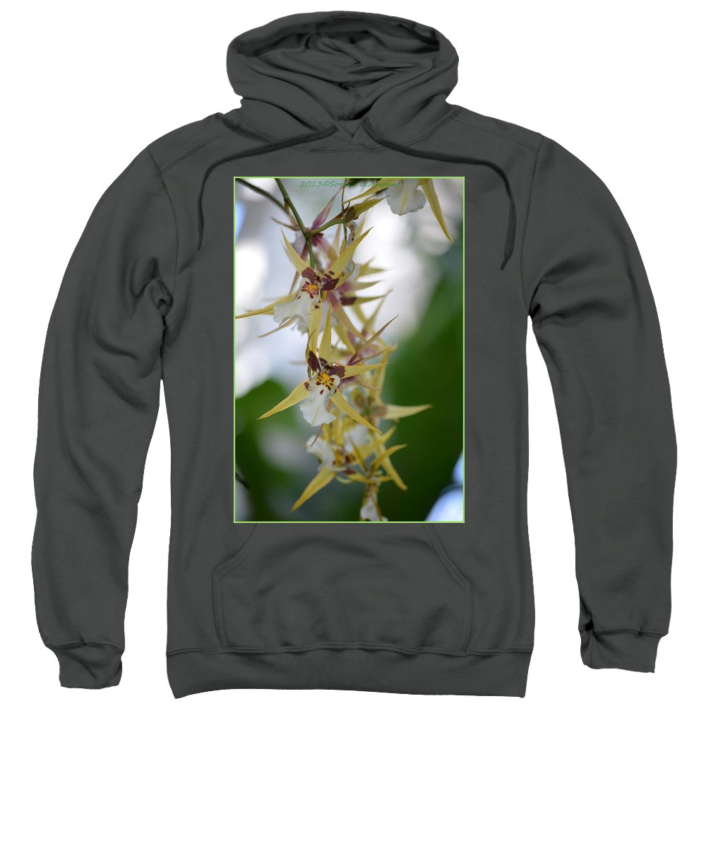 Anniversary Flower Sweatshirt featuring the photograph Star Orchids by Sonali Gangane