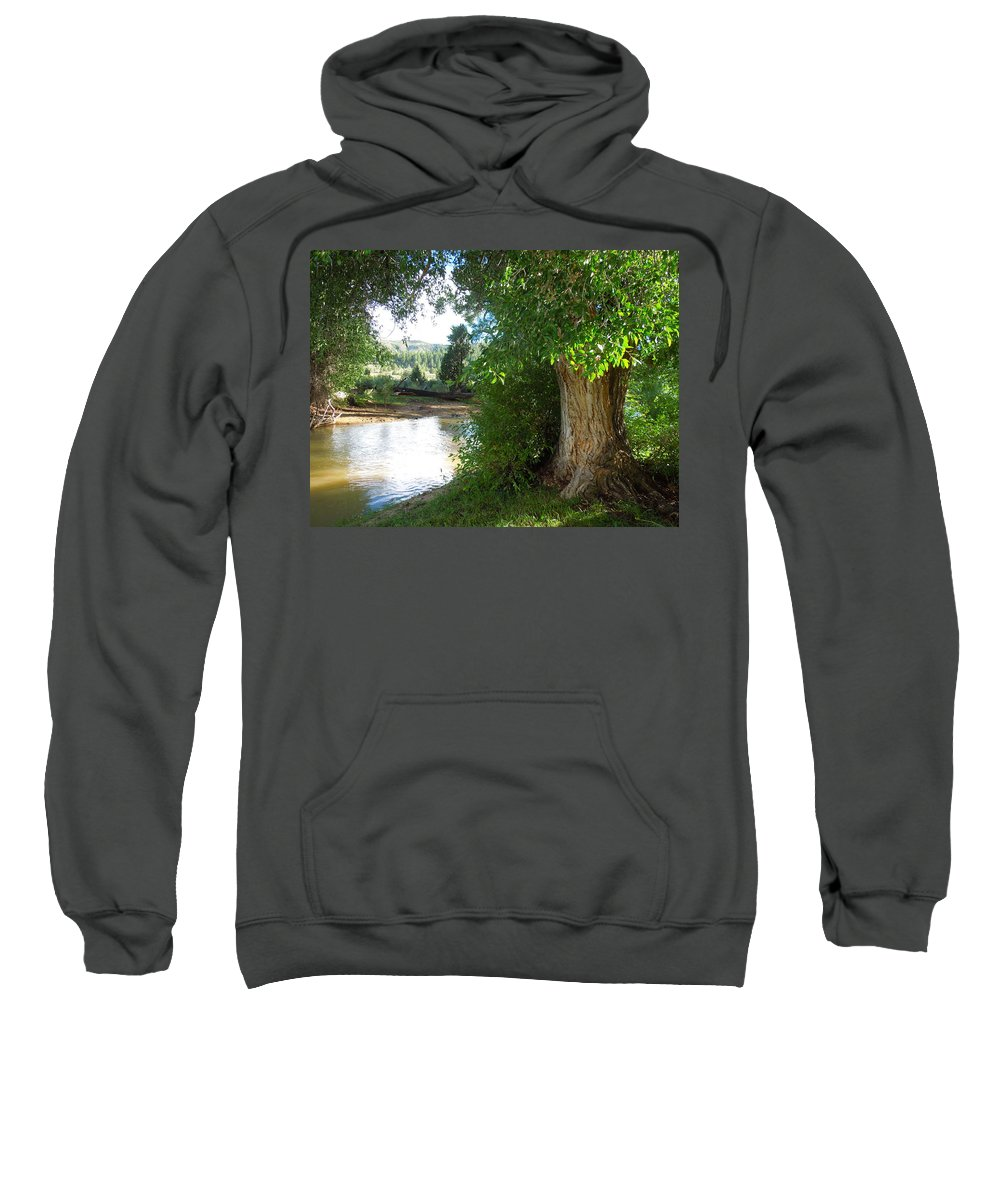 Tree Sweatshirt featuring the photograph Strength Beside The Stream by Donna Jackson