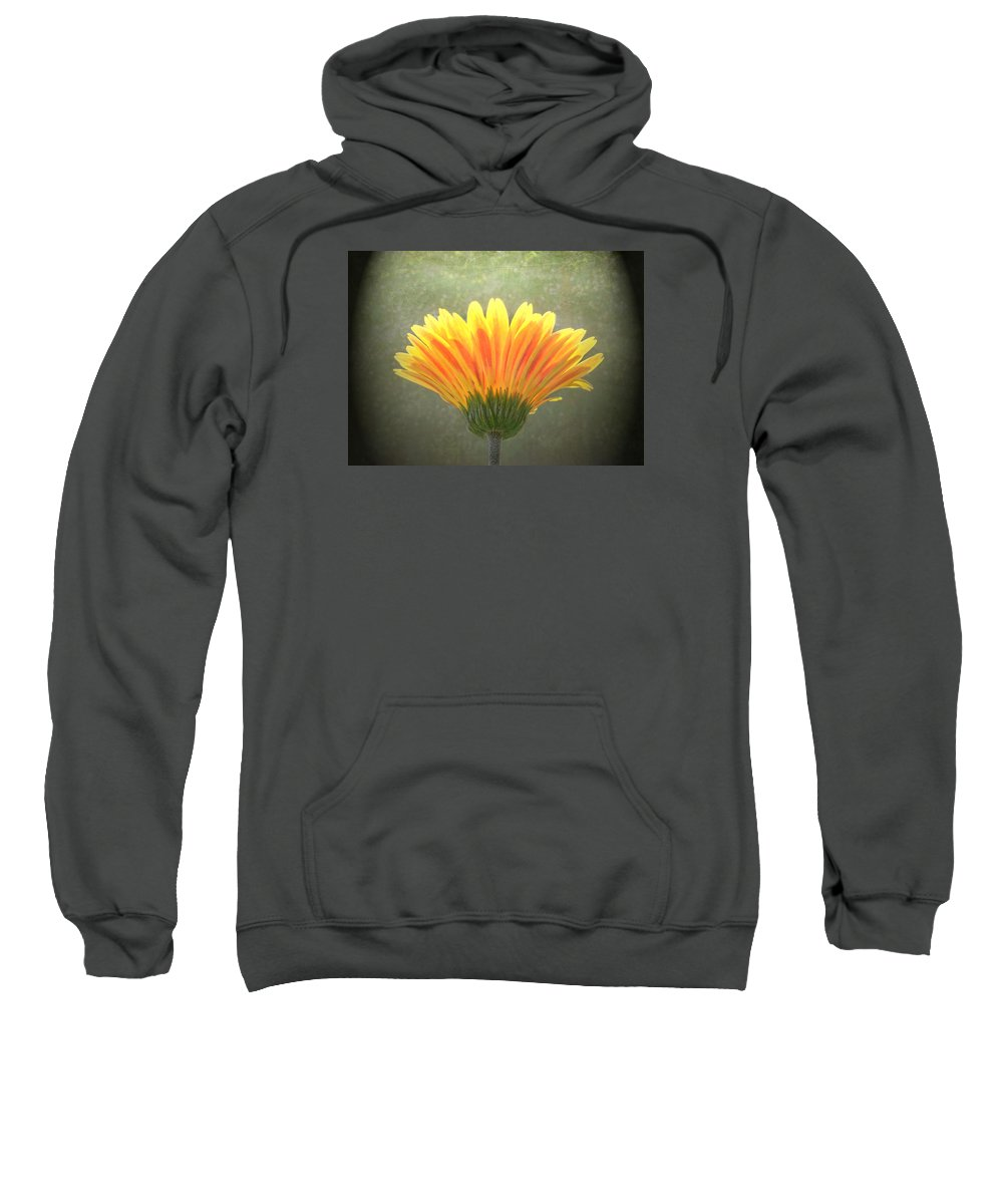 Sweatshirt featuring the photograph Such Joy In The Light by Sandi OReilly