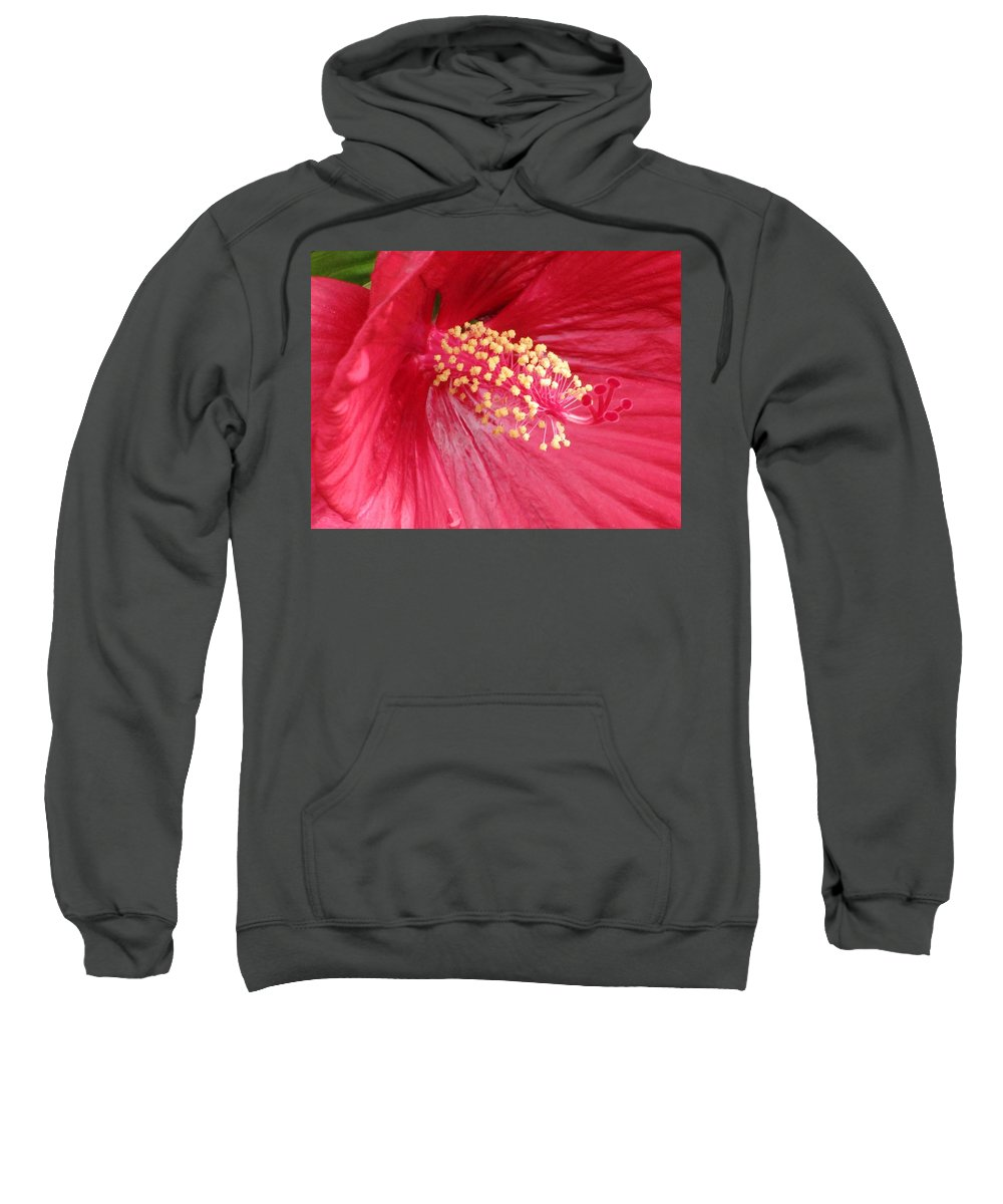 Mallow Sweatshirt featuring the photograph Summerific Cranberry Crush 01 by Pamela Critchlow