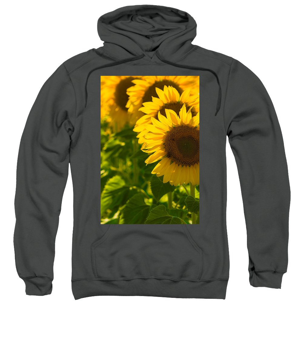 Yellow Sweatshirt featuring the photograph Sun City by Jacquelyn Crady