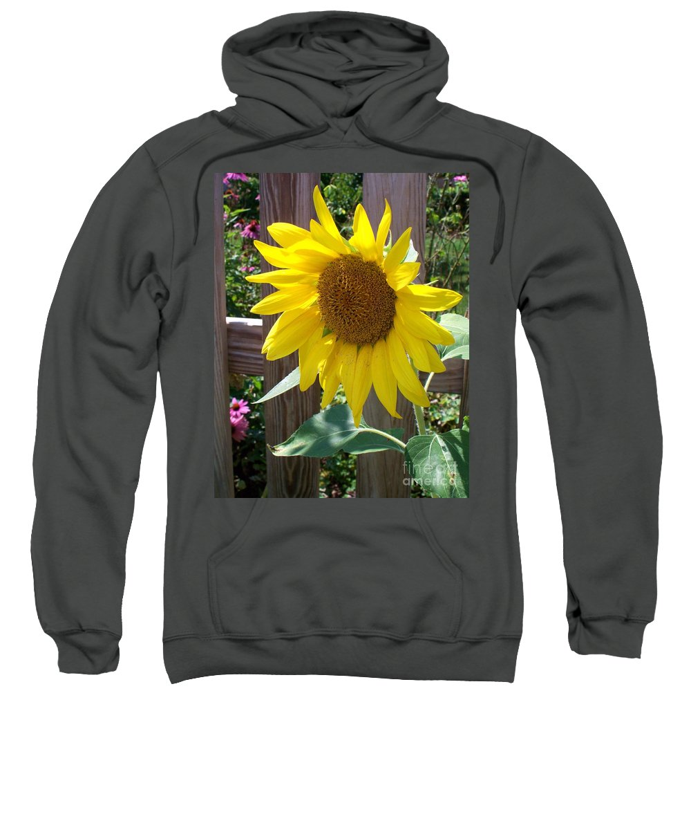 Sunflower Sweatshirt featuring the photograph Sunflower 1 by Eric Schiabor