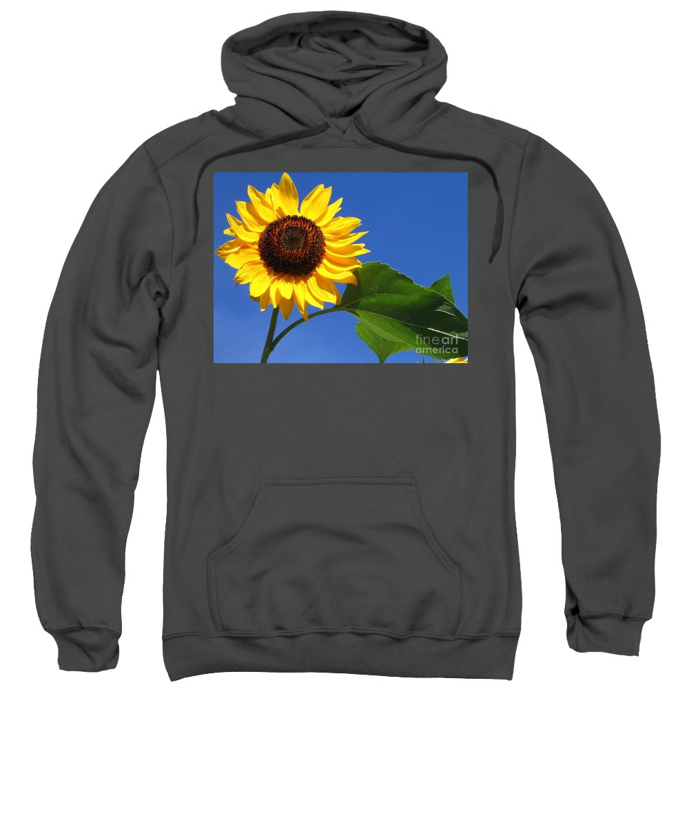 Sunflower Sweatshirt featuring the photograph Sunflower Alone by Line Gagne