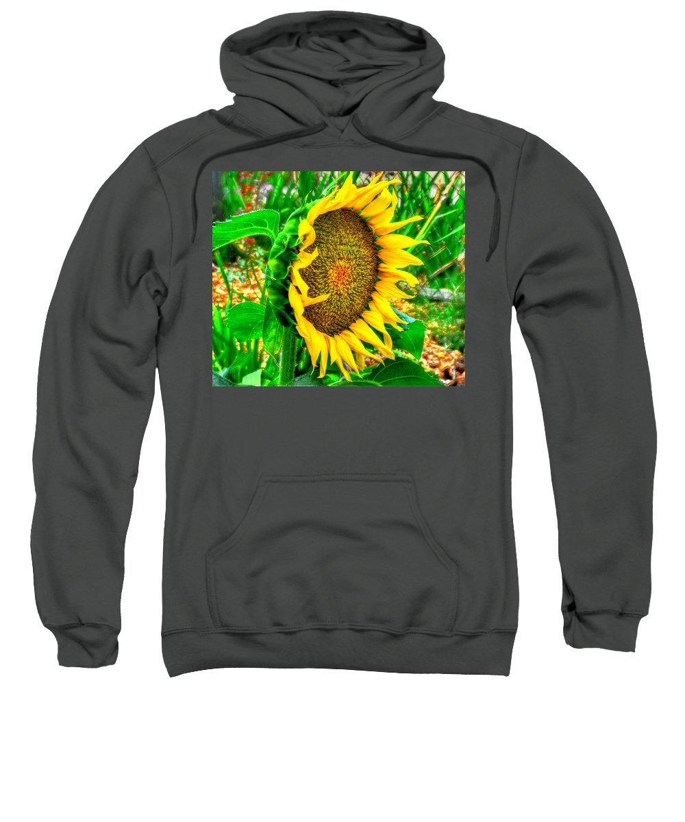 Sunflower Bloom Summer Sweatshirt featuring the photograph Sunflower Bloom by Greg Joens