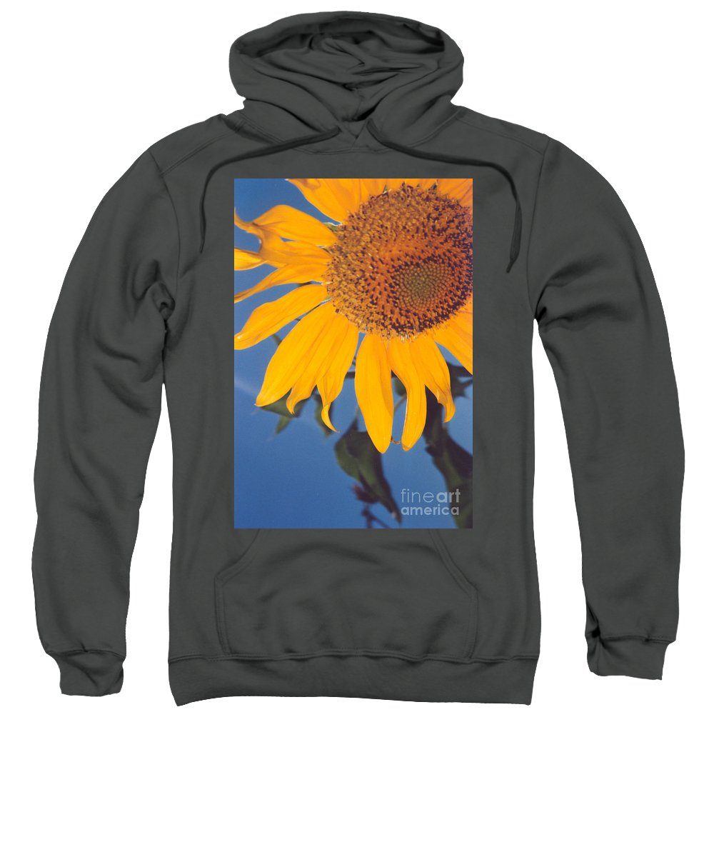 Flower Sweatshirt featuring the photograph Sunflower In The Corner by Heather Kirk