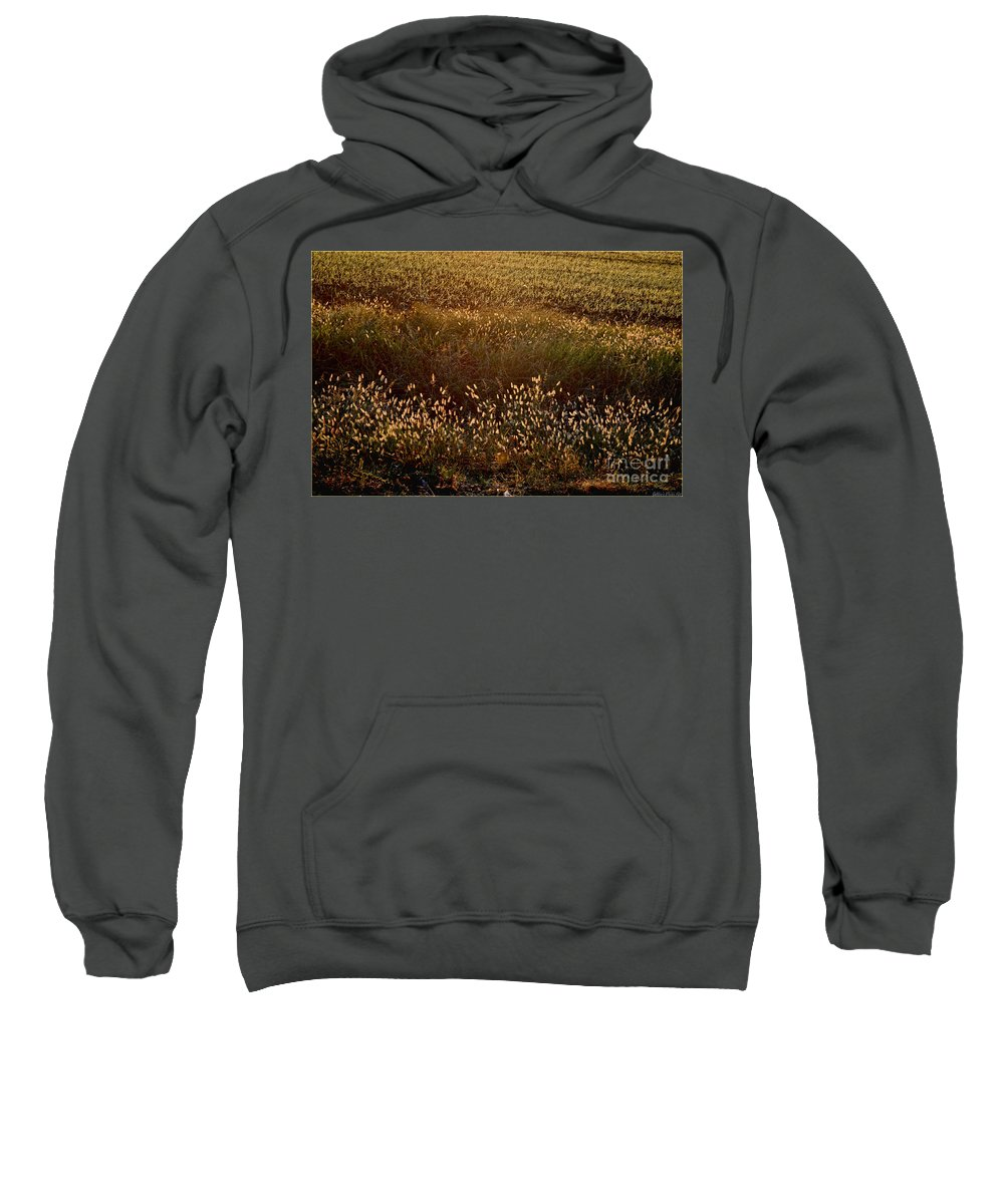 Nature Sweatshirt featuring the photograph Sunrise On Wild Grass by Debbie Portwood