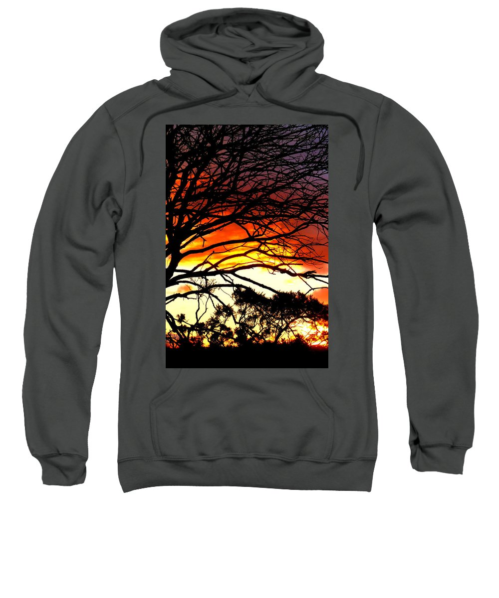 Sunset Sweatshirt featuring the photograph Sunset Tree Silhouette by The Creative Minds Art and Photography