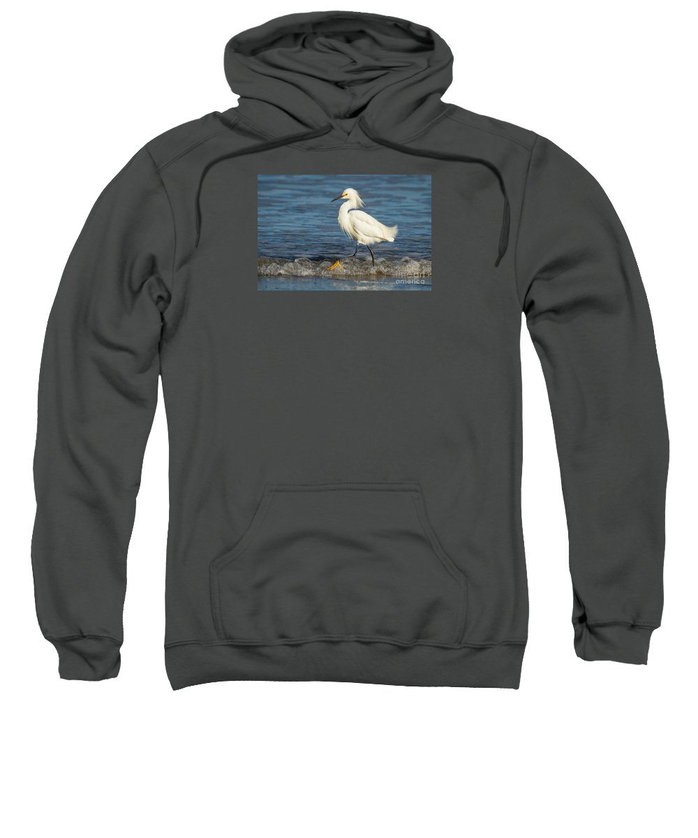 Animal Sweatshirt featuring the photograph Surf Egret by Alice Cahill