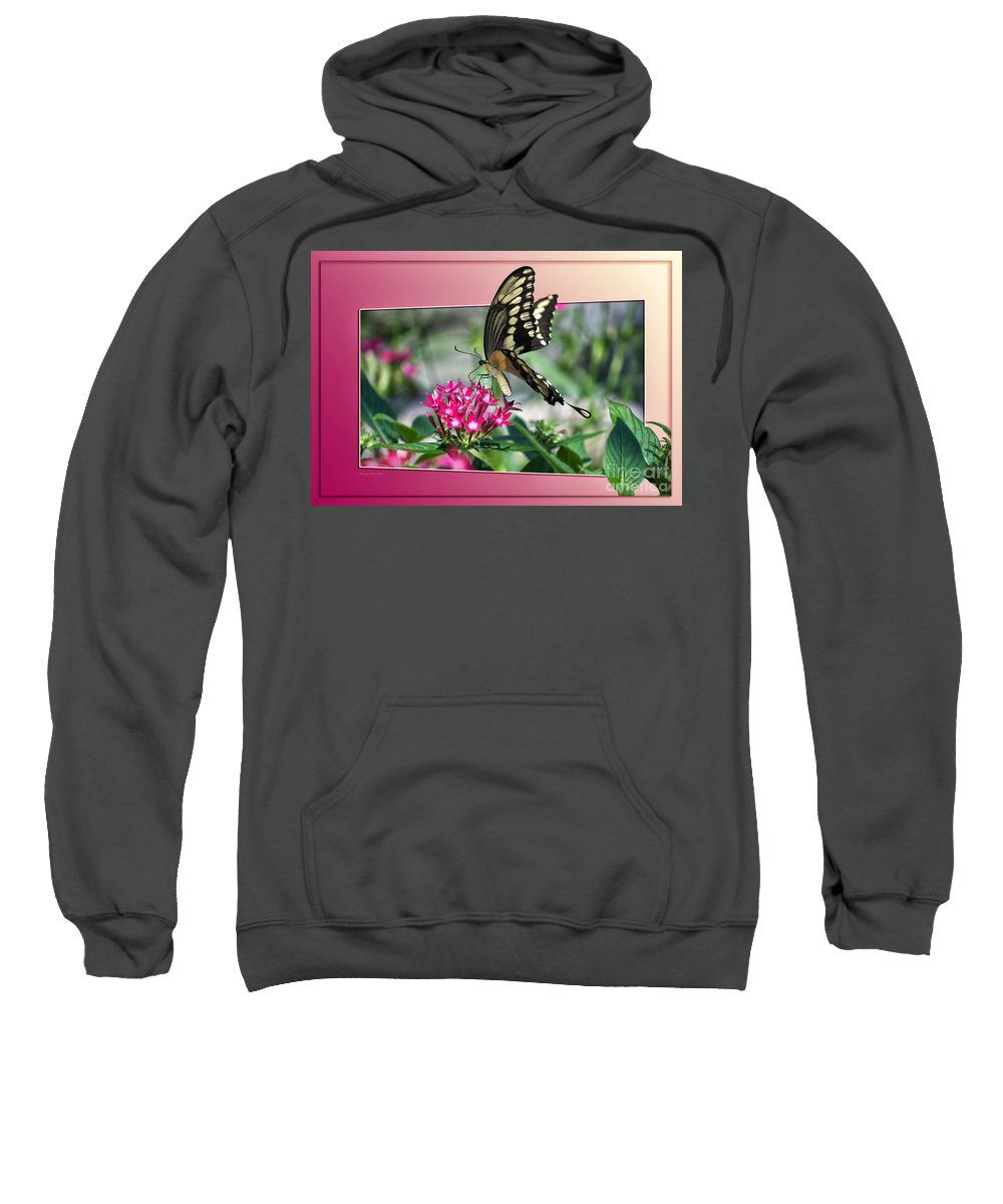 Butterfly Sweatshirt featuring the photograph Swallowtail Butterfly 03 by Thomas Woolworth