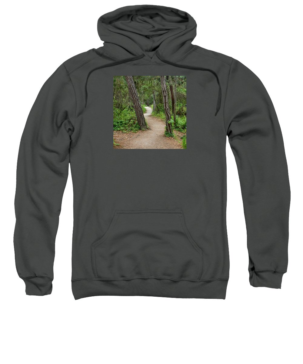 Monterey Sweatshirt featuring the photograph Take A Hike by Art Block Collections