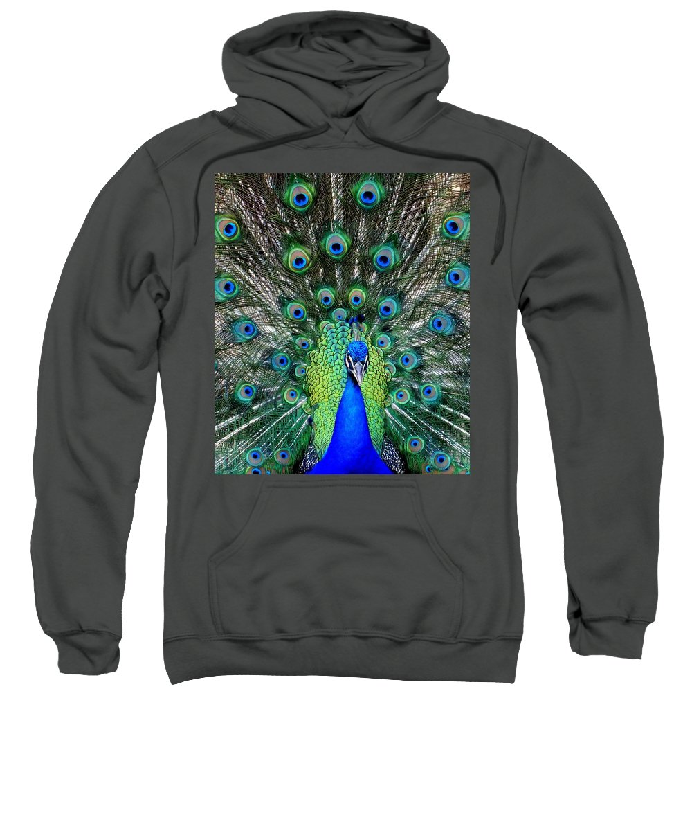 Feathers Sweatshirt featuring the photograph Talk Of The Walk by Karen Wiles