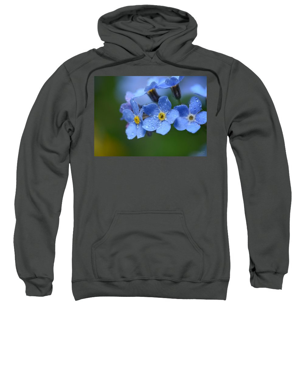 Forget Me Not Sweatshirt featuring the photograph Tearful Goodbye by Lisa Knechtel