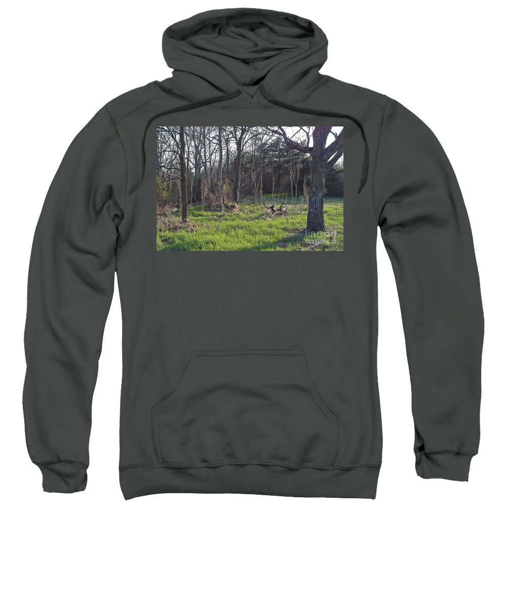 Spring Sweatshirt featuring the photograph Temptation by Joseph Yarbrough