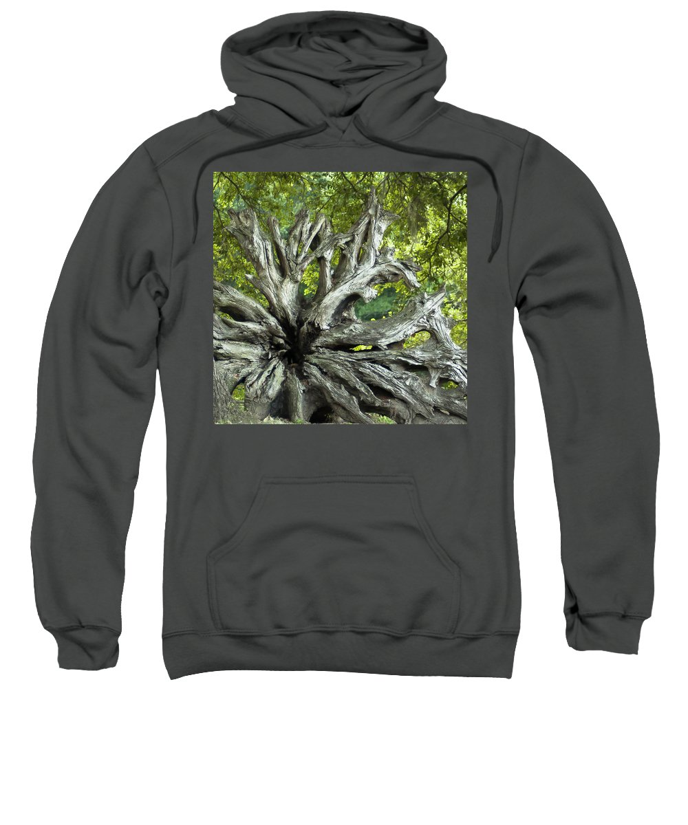 Tree Sweatshirt featuring the photograph Texture by Norman Johnson