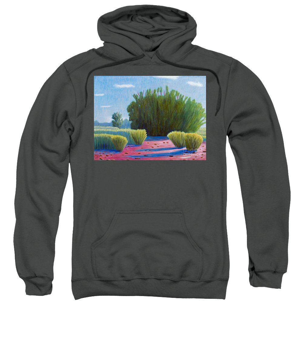 Landscape Sweatshirt featuring the painting The Arroyo by Brian Commerford