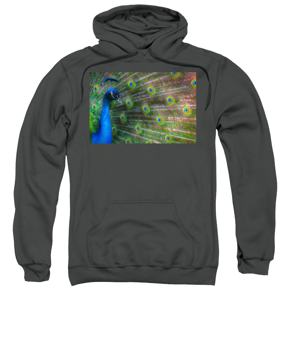 Animals Sweatshirt featuring the photograph The Colours Of The Peacock by Rabiri Us