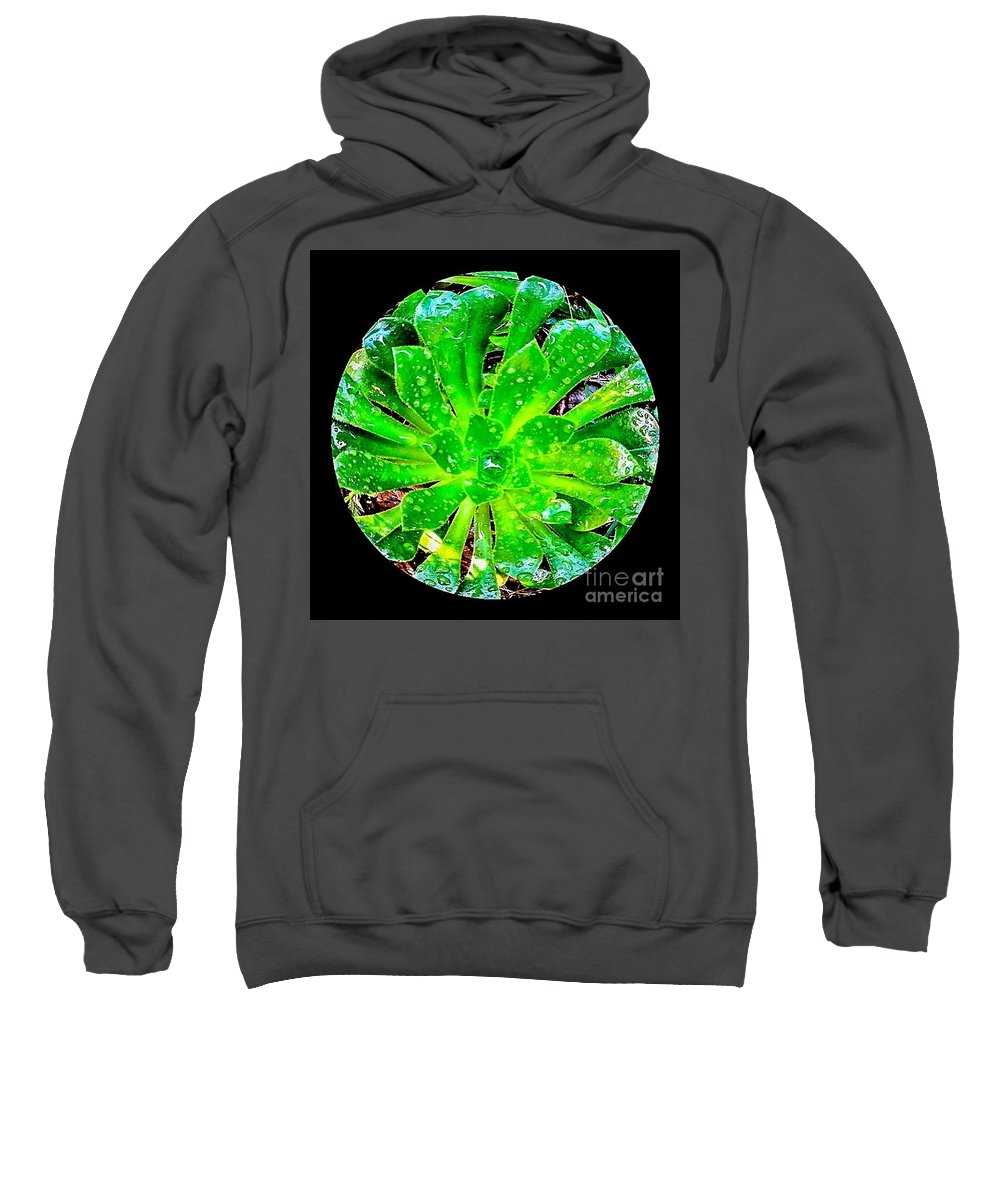 Plants Sweatshirt featuring the photograph The Dew No.12 by Fei A