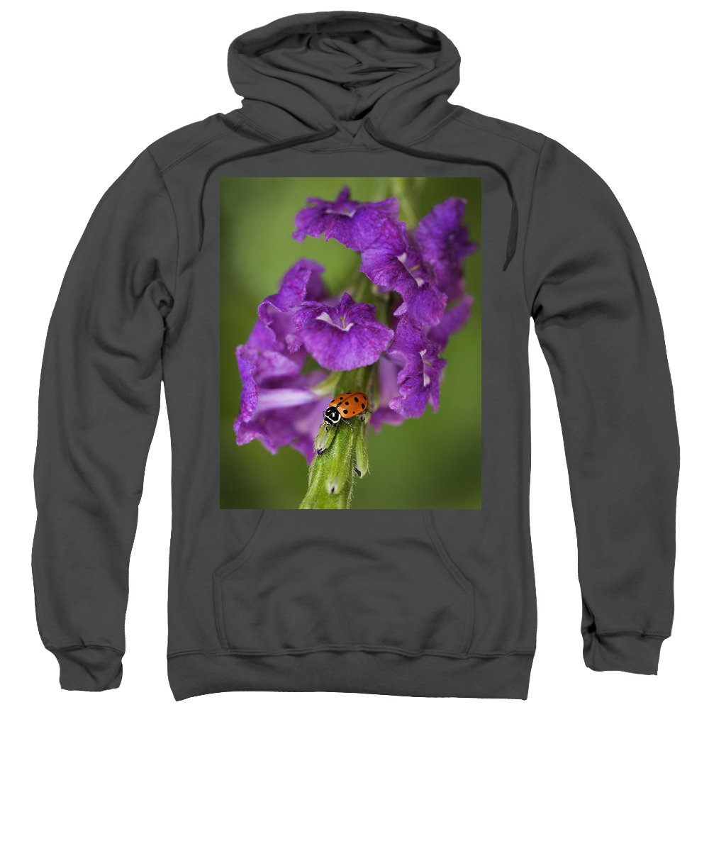 Blade Sweatshirt featuring the photograph The Lady by Linda D Lester