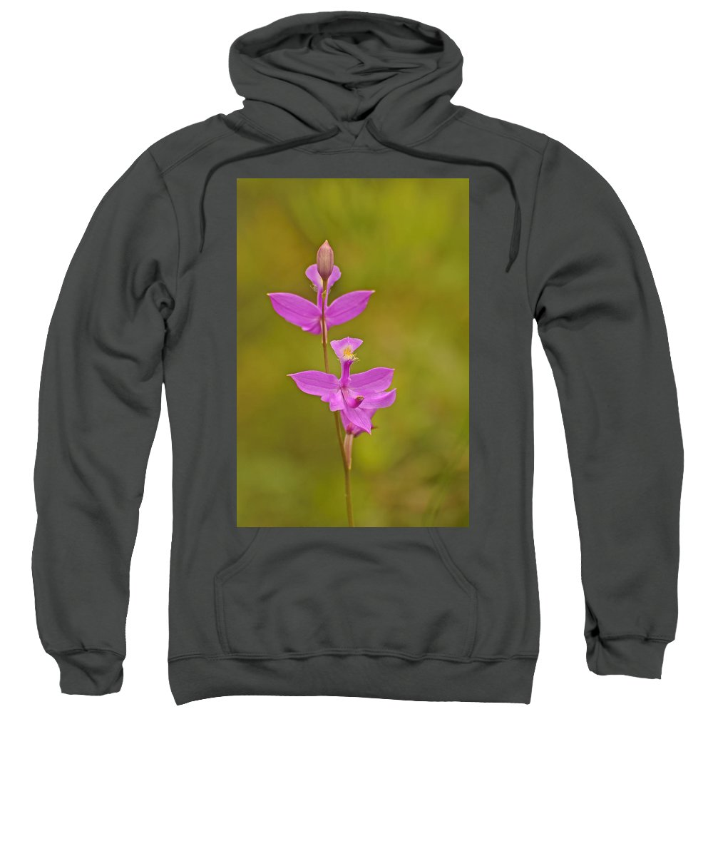 Grass Pink Sweatshirt featuring the photograph The Prettiest Pink by Joshua McCullough