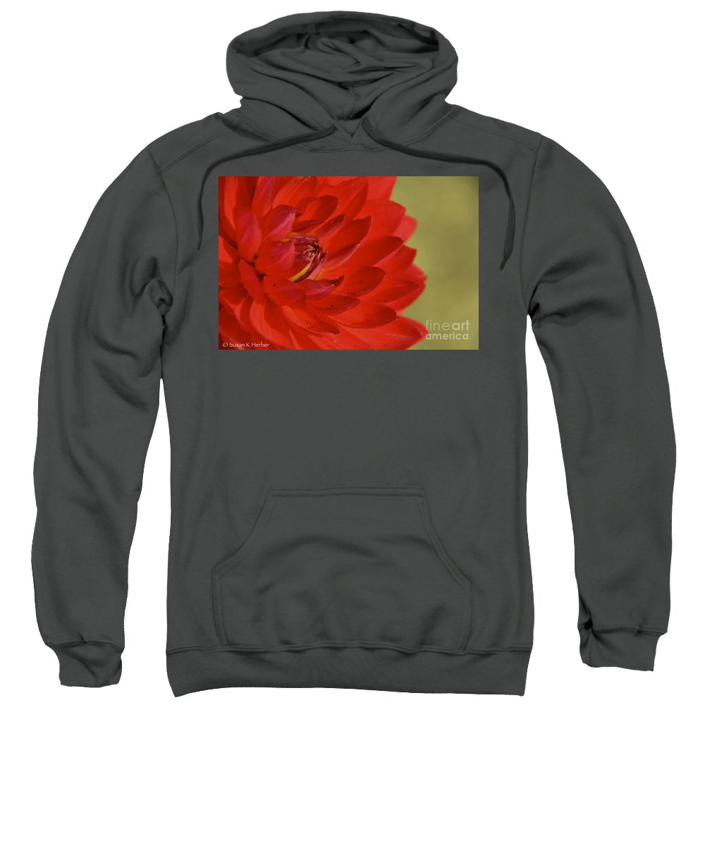 Flower Sweatshirt featuring the photograph The Red Sun Dahlia by Susan Herber