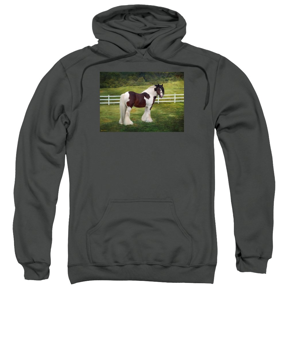 Gypsy Sweatshirt featuring the photograph The Rock by Fran J Scott