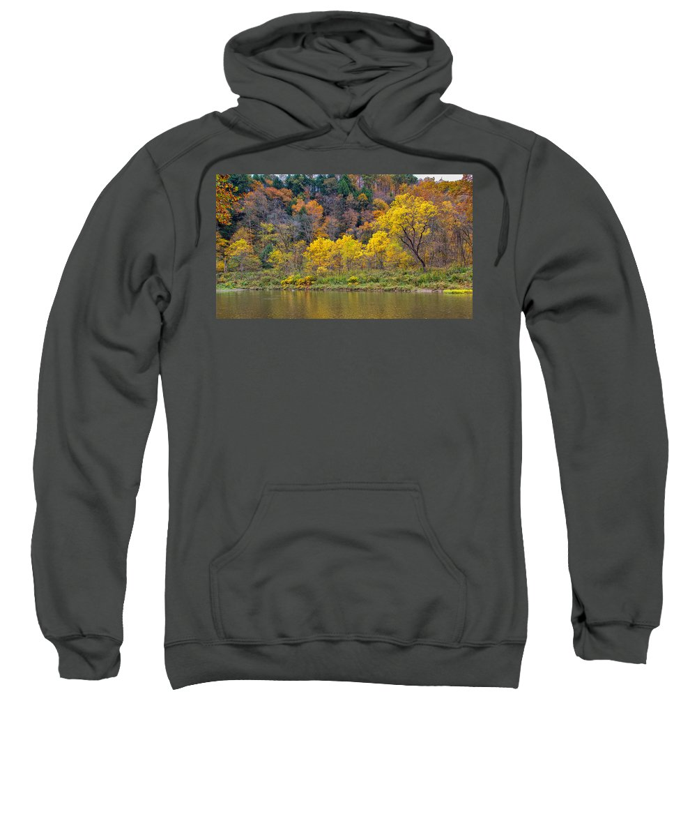 Tree Sweatshirt featuring the photograph The Season Of Yellow Leaves by John M Bailey