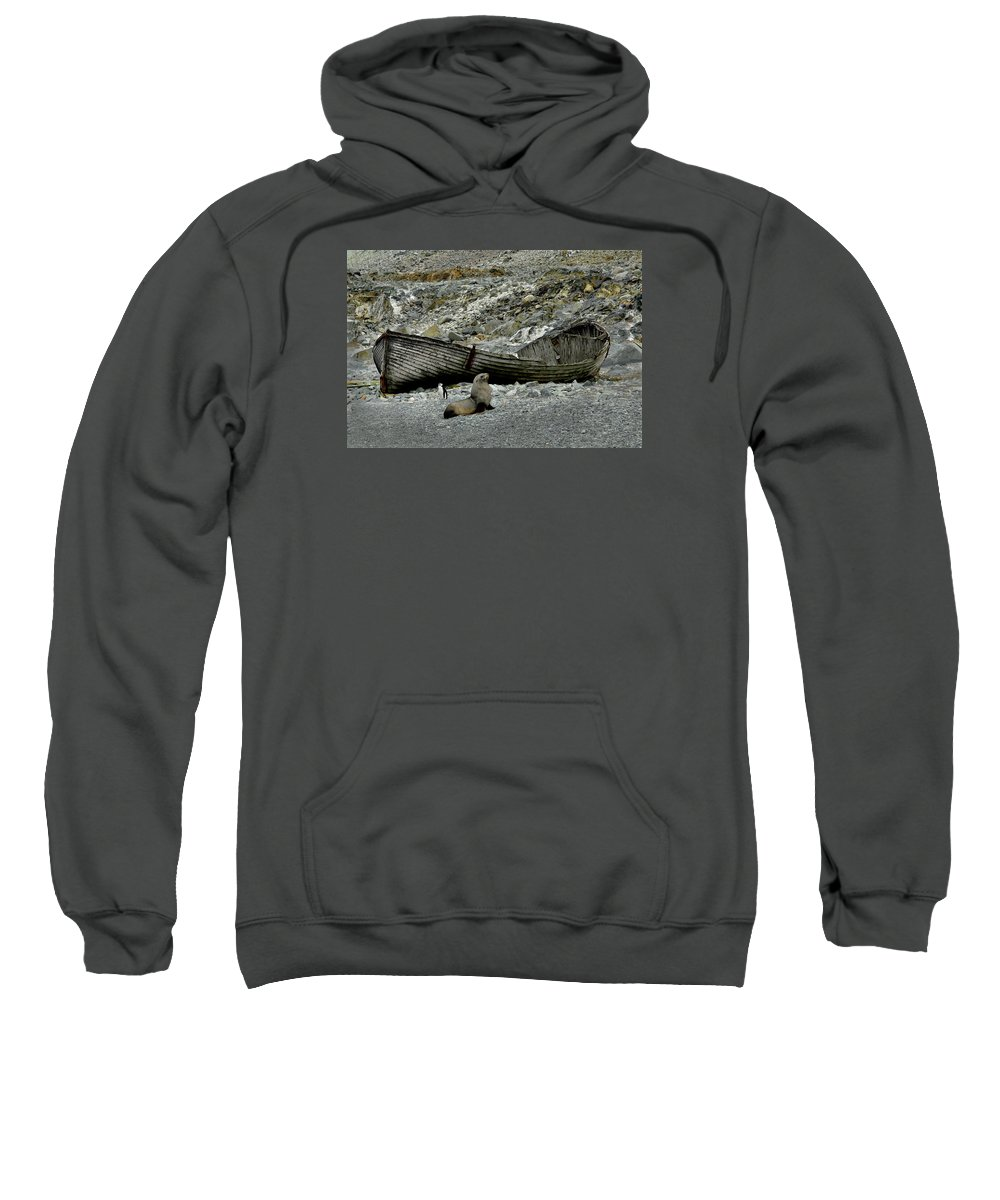 Antarctica Sweatshirt featuring the photograph The Sentries by Alan Toepfer