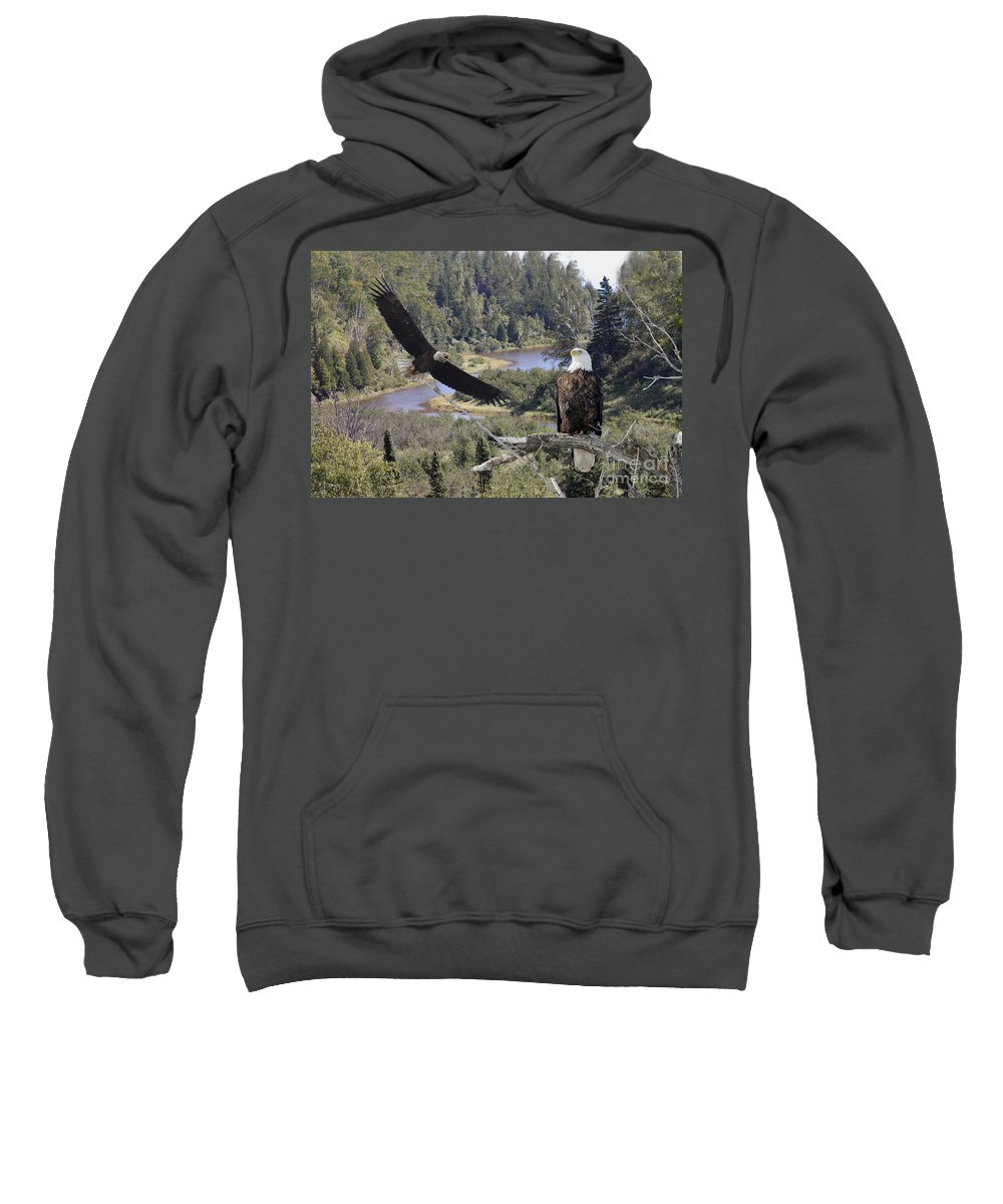 Eagle Sweatshirt featuring the photograph The Silent Watch by Lori Tordsen