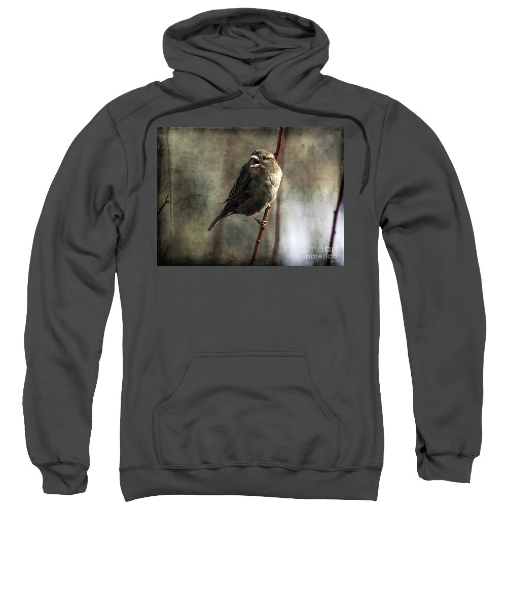 Sparrow Sweatshirt featuring the photograph The Singing Sparrow by Janice Pariza