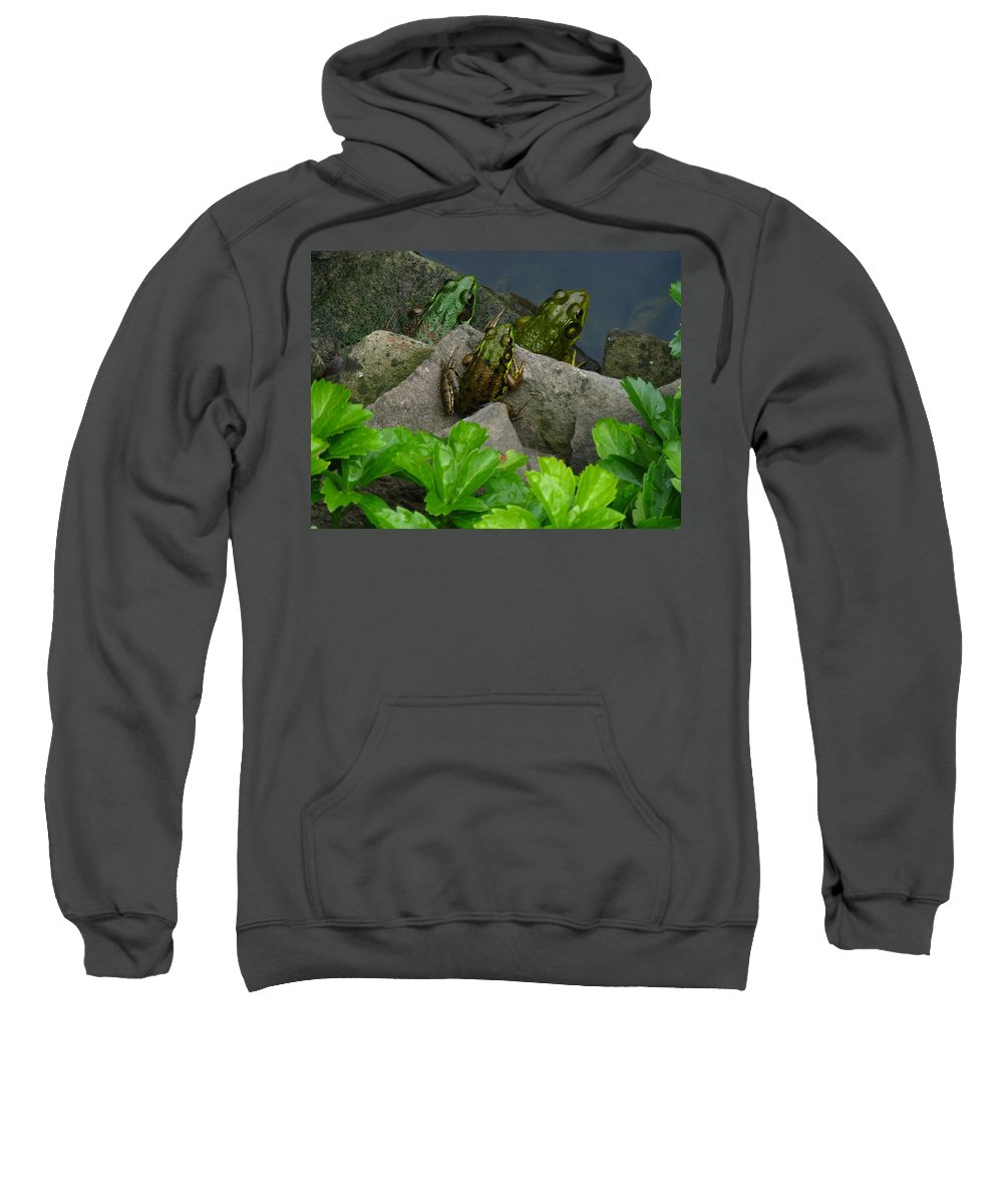 The Three Amigos Sweatshirt featuring the photograph The Three Amigos by Raymond Salani III