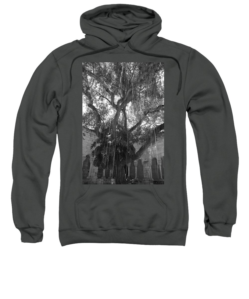 Black And White Sweatshirt featuring the photograph The Tree Vines by Rob Hans