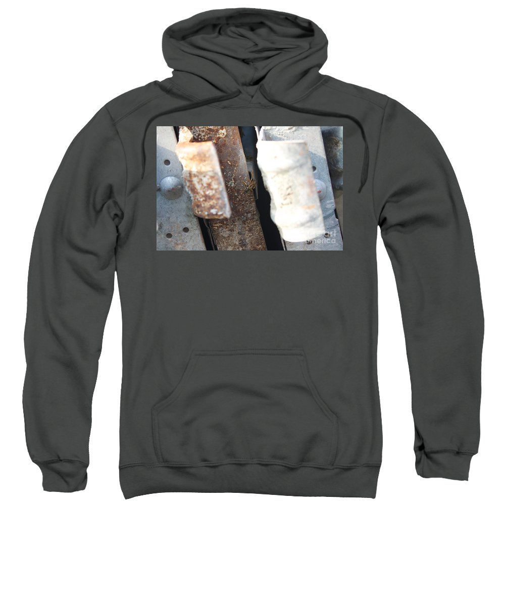Rust Sweatshirt featuring the photograph There's Life On Rust by Donato Iannuzzi