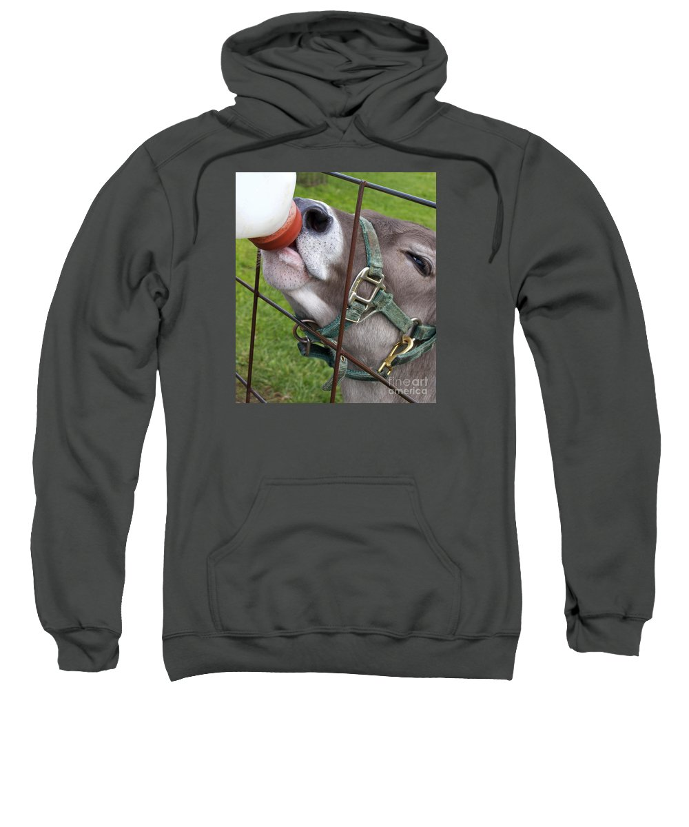 Calf Sweatshirt featuring the photograph Thirsty Baby by Ann Horn
