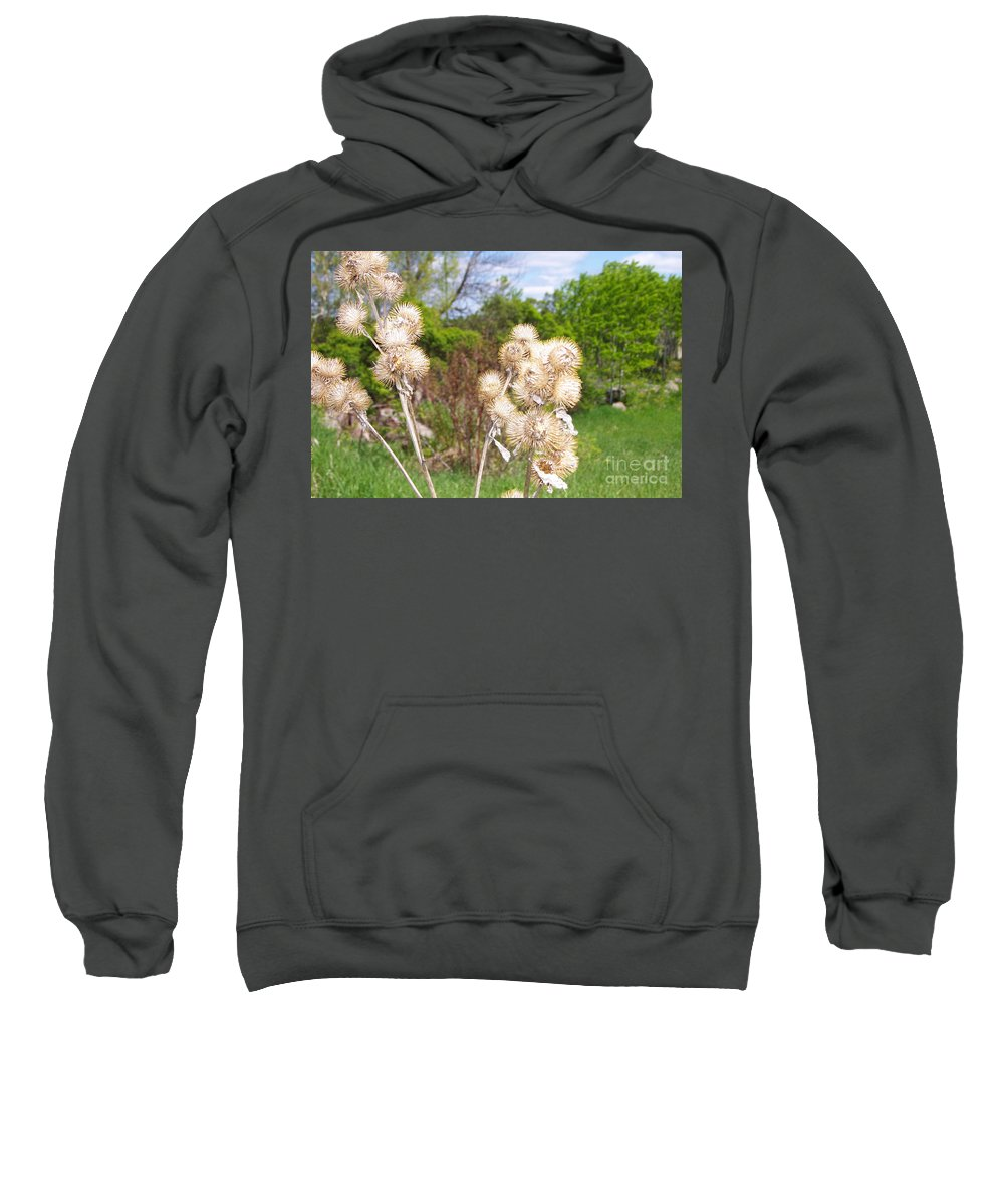 Thistle Sweatshirt featuring the photograph Thistle Me This by Mary Mikawoz