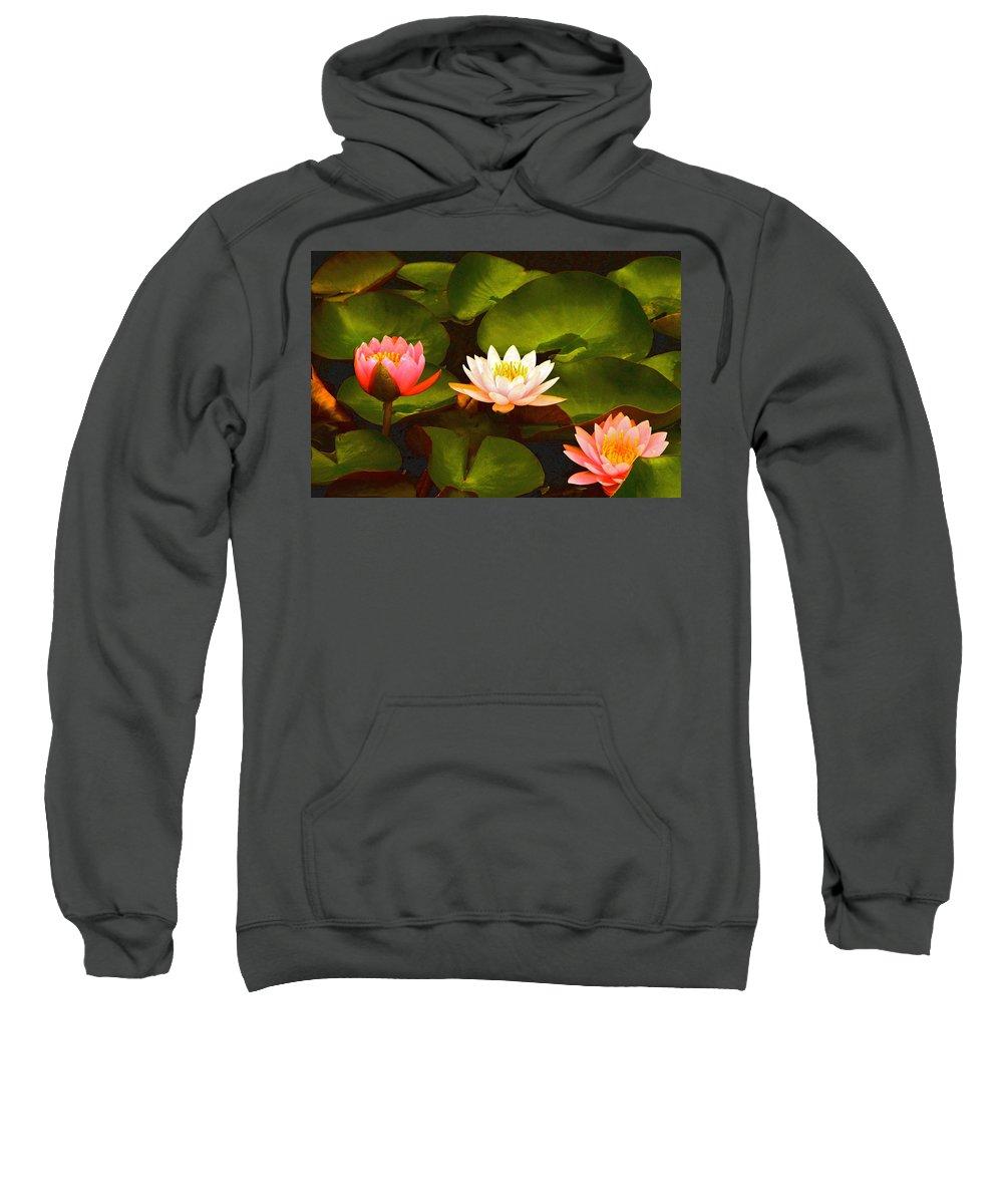 Three Lovely Gracious Waterlilies Sweatshirt featuring the photograph Three Lovely Gracious Waterlilies by Byron Varvarigos