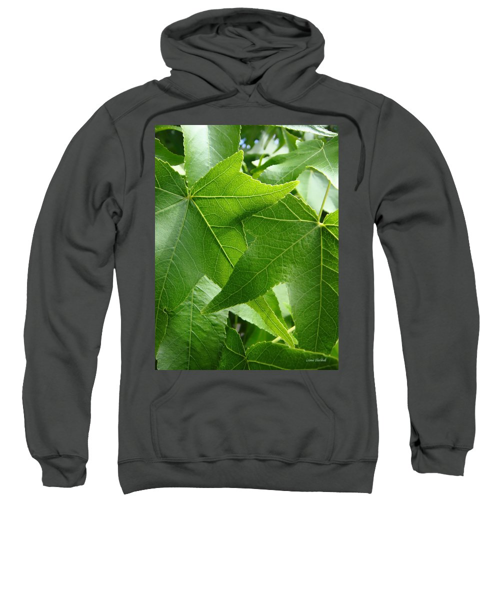 Leaves Sweatshirt featuring the photograph Til Death Us Do Part by Donna Blackhall