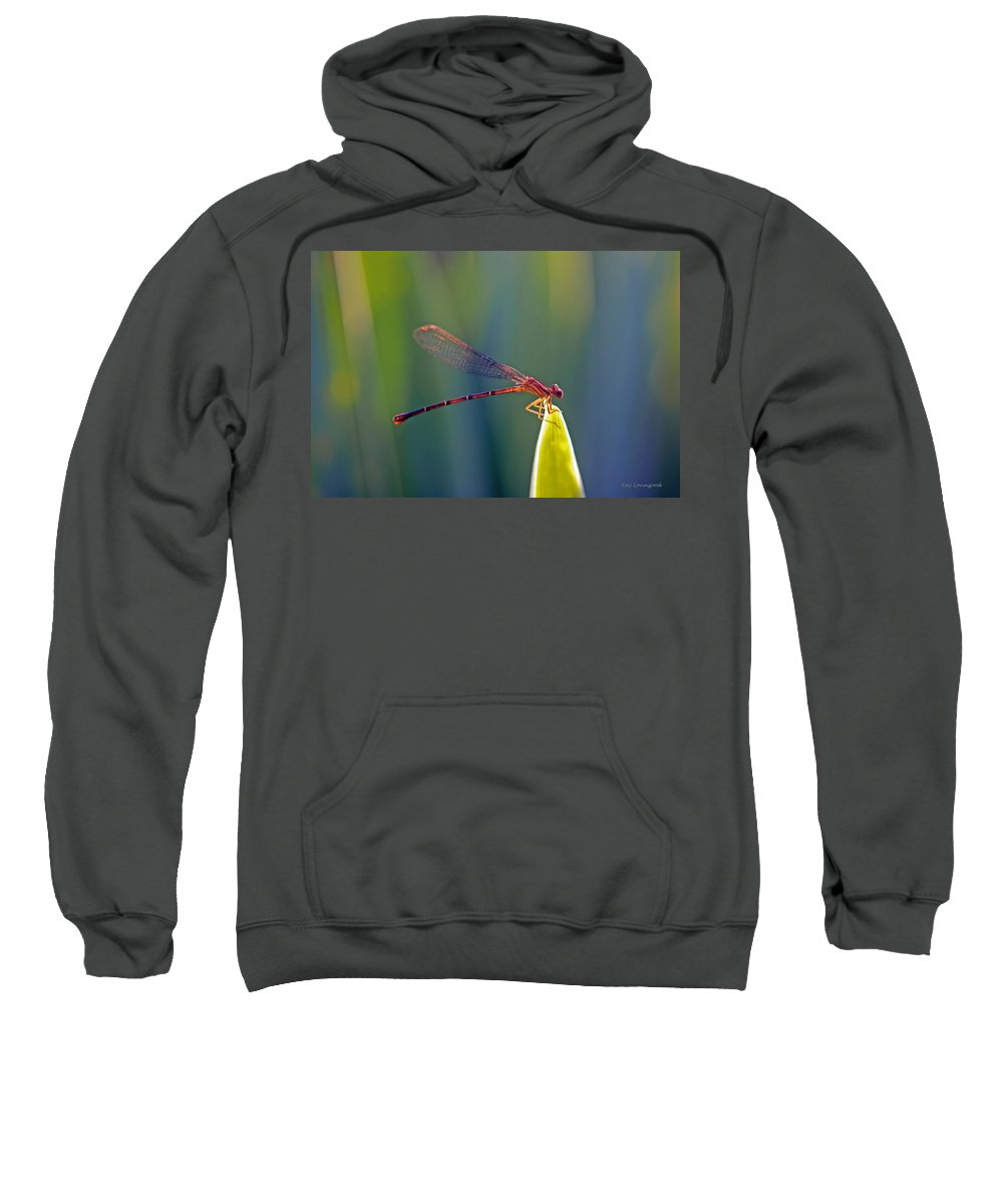 Animal Sweatshirt featuring the photograph Tip Of The Grass by Kay Lovingood
