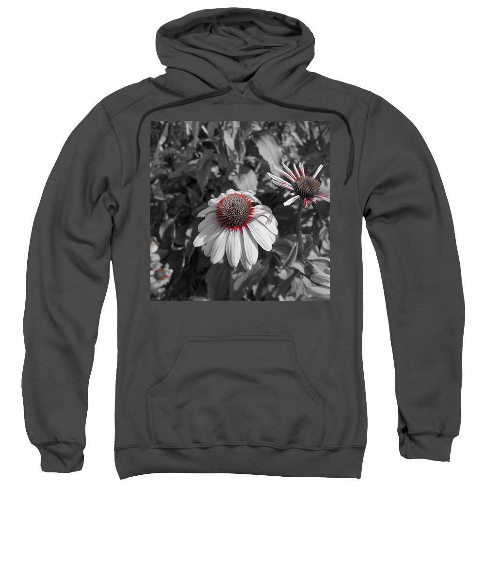 Coneflower Sweatshirt featuring the photograph Touch Of Red Invite by Tim G Ross